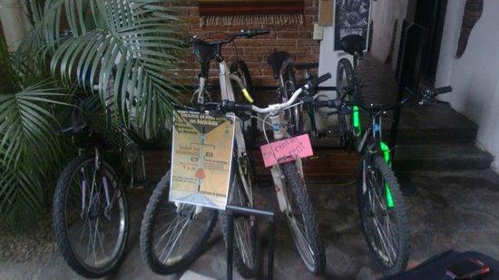 Hotel Las Mariposas: Renta de Bici