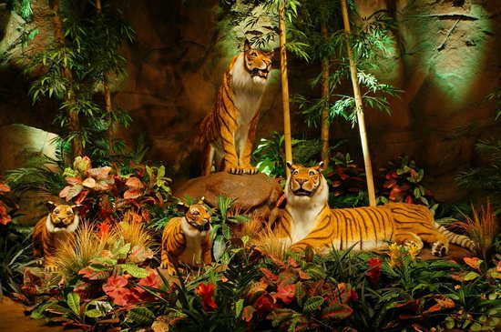 Rainforest Cafe : Rain Forest Cafe tigers.
