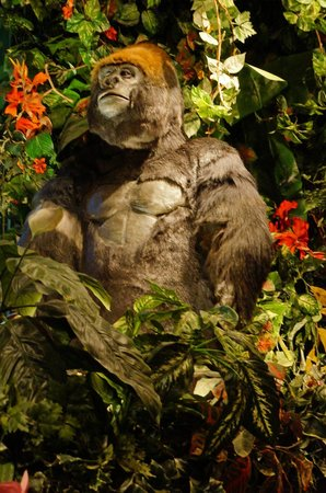 Rainforest Cafe : One of several gorillas.