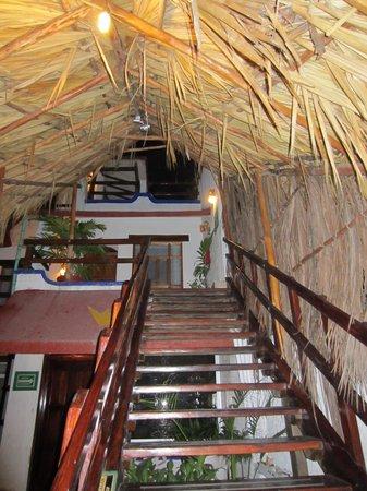 Eco-Hotel El Rey Del Caribe: Treppen, die zu Zimmern führen