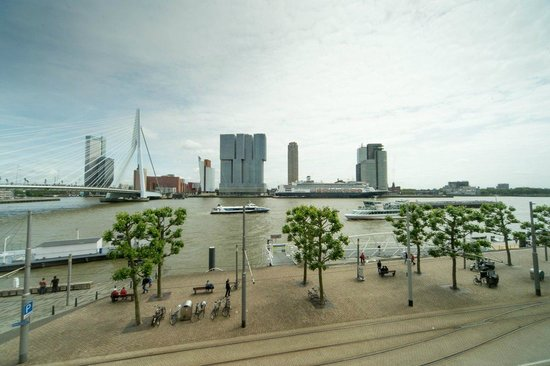 Thon Hotel Rotterdam : What a view!!