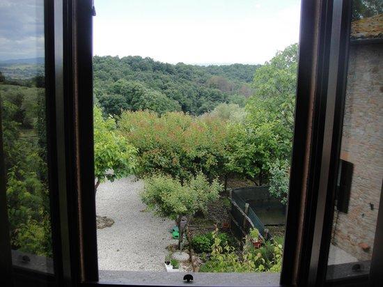 Antica Fattoria del Colle: Quiet, clean -- and a great view!