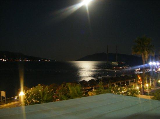 Salmakis Resort & Spa: Moonlight over Bodrum Bay from pool bar