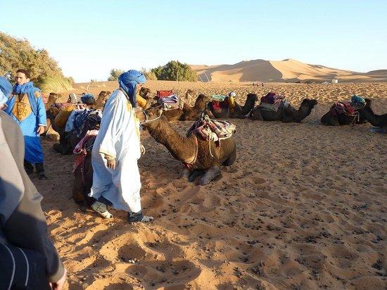 Bivouac les Touareg chez Bachir: wachten op het vertrek met de kamelen