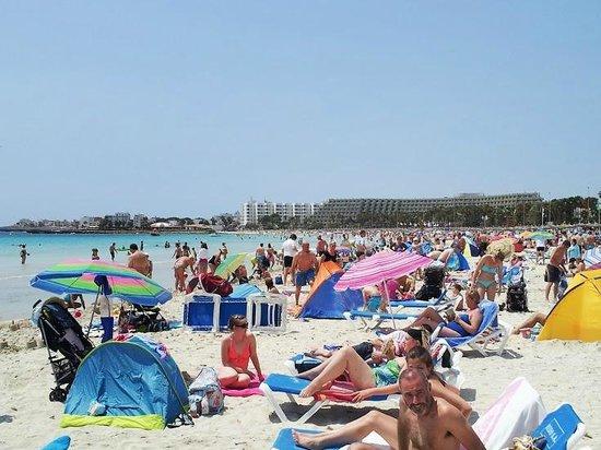 Protur Vista Badia Aparthotel: Beach