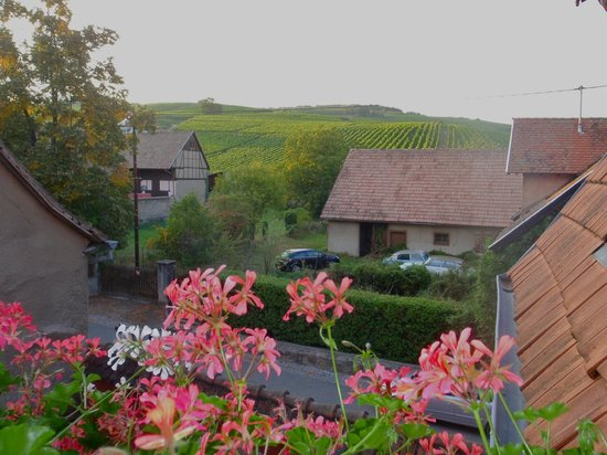 Hotel Winzenberg: view 2 from balcony