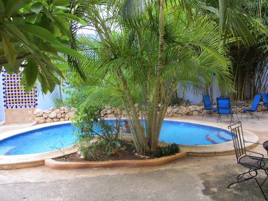 Hotel Medio Mundo : Pool