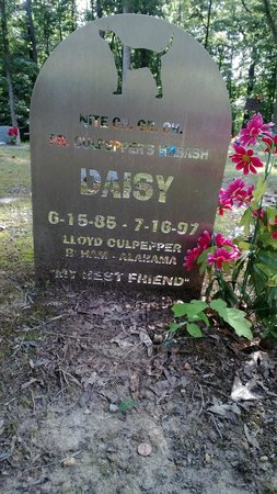 Key Underwood Coon Dog Memorial Graveyard: Daisy