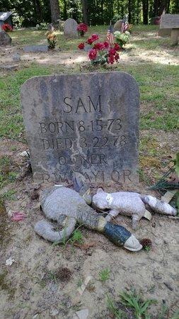 Key Underwood Coon Dog Memorial Graveyard: Sam