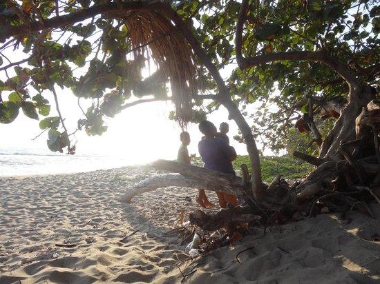 Irie Rest Guest House : Der Strand liegt direkt vor der Tür