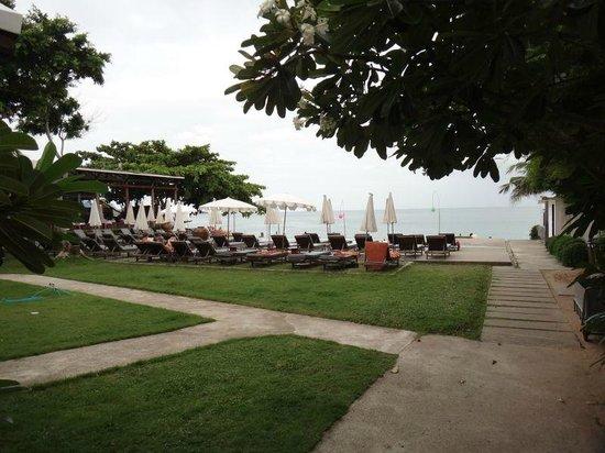Lamai Wanta: pool area next to the beach