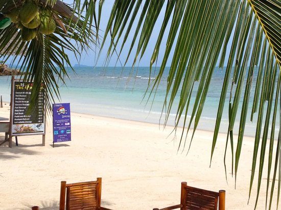 Seaboard Bungalows: Beach infront of the hotel