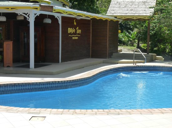 Stonefield Estate Resort: Mang Tree and pool