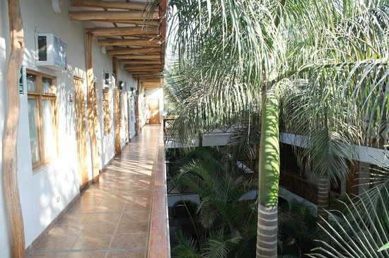 Casa Andina Classic Nasca: View corridor and palm trees