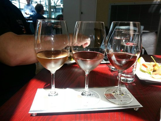 Vino Volo: Winery, grape, wine, year, tasting graph and notes, bottle price on tearoff coasters. Brilliant!