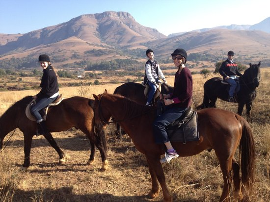 Lydenrust Guest Farm: Beautiful ride early in the morning.