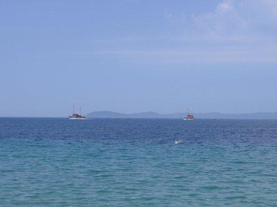 Toroni Blue Sea Hotel & Spa: Tourists visiting the beach Toroni