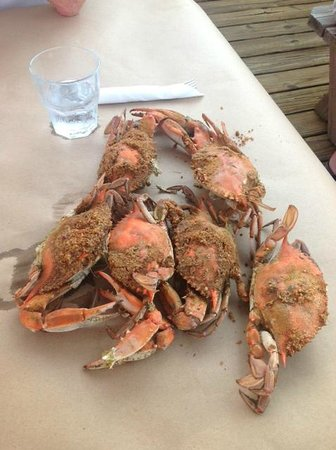 Schooners On The Creek: Half dozen crabs