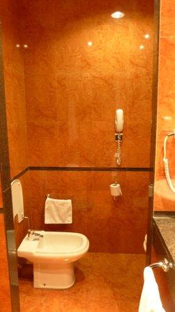 Tryp Leon Hotel: baño, box de WC y bide