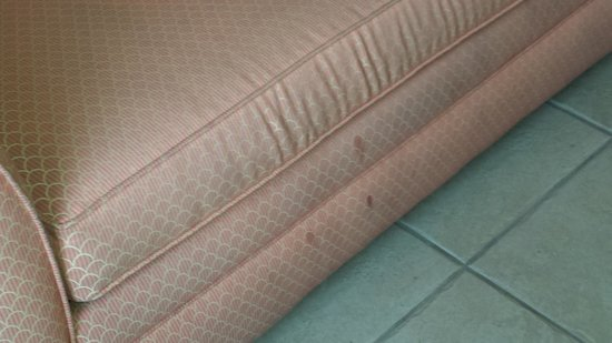 Legacy Vacation Resorts: Erk. the couch was stained and filthy