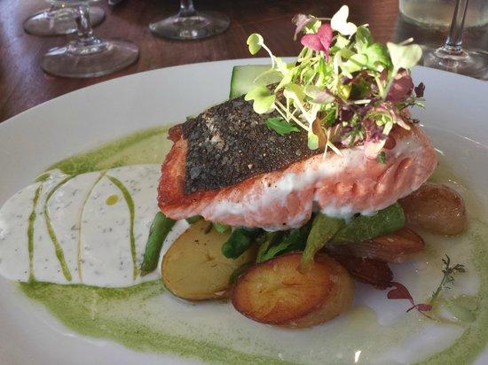 Wild Fish: Salmon
