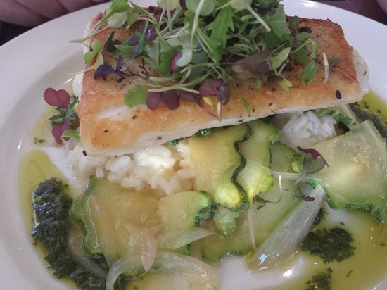 Wild Fish: Halibut