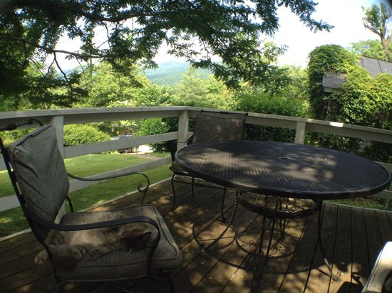 Sharp Rock Vineyards: The Cottage deck, looking toward Old Rag (and Ray the cat)