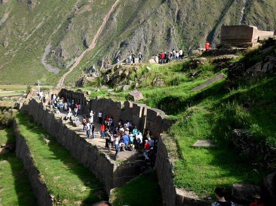 Patacancha  Valley: Panorámica de diferentes Grupos ascendiendo en Ollantaytambo.