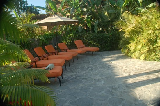 Todos Santos Inn: Lounge chairs - pool side