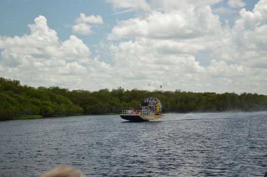 Camp Holly Fishing & Airboats: Airboat