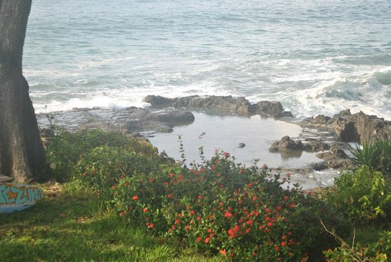 Proyecto Lodge: The tide pools below the yard
