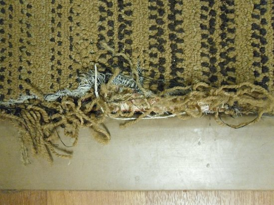 Extended Stay America - San Diego - Oceanside: foul smelling ripped carpet Health hazard