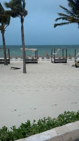 View of beach beds