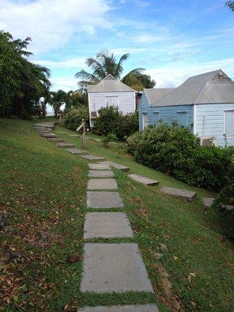 Cocobay Resort: Way to reception