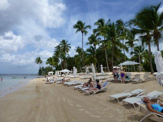 Casa de Campo Resort & Villas: Minitas Beach