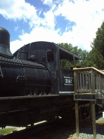 The Little River Railroad and Lumber Company Museum: Railroad Outside