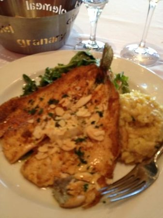 Caffe Opera : trout with risotto