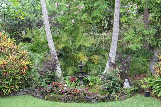 Honu Kai B&B: Some views of the grounds at Honu Kai