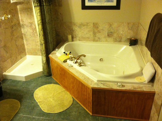 Conifer House Inn : Working jacuzzi style bath for 2