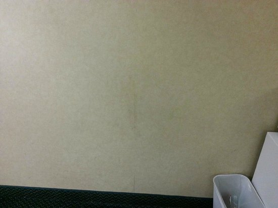 Microtel Inn & Suites by Wyndham Chattanooga/near Hamilton P : Dirt on the walls, paper peeling off-all walls like this