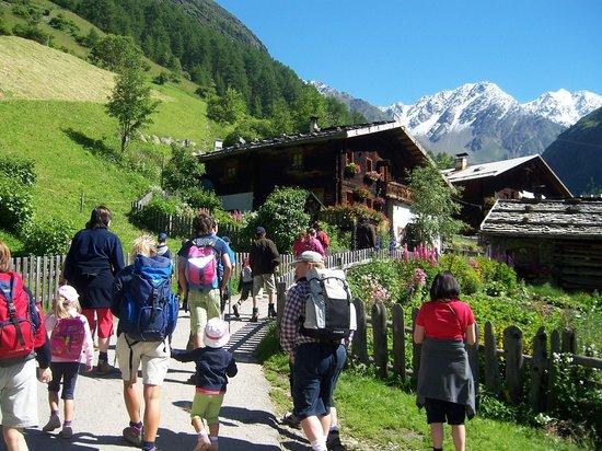 Aktiv & Familienhotel Adlernest: Geführte Hauswanderung