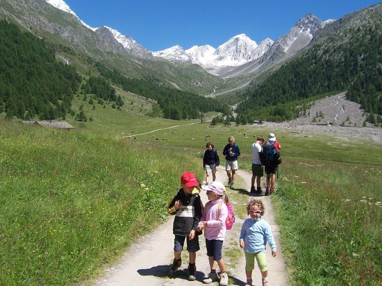 Aktiv & Familienhotel Adlernest: Familienwandern