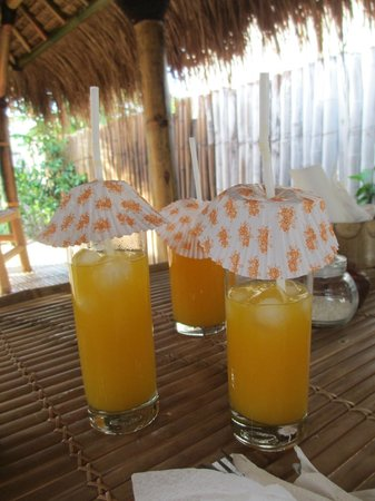 Gili T and B Homestay : Owner covered our glasses with cupcake wrappers so that flies can't land on the drinks