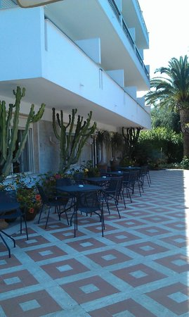 Alpha Hotel: Front patio