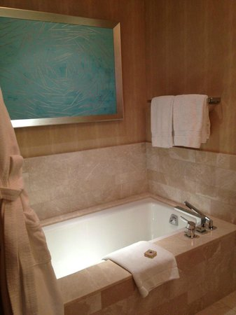 Four Seasons Baltimore: Nice tub with TV