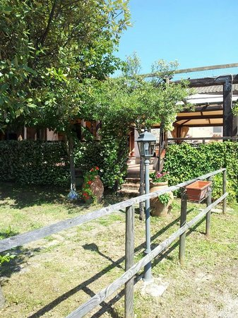 Country House Torre Burchio: giardino