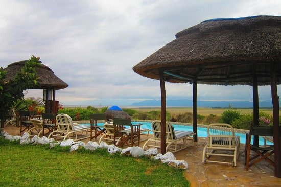Manyara Wildlife Safari Camp: View from dining area