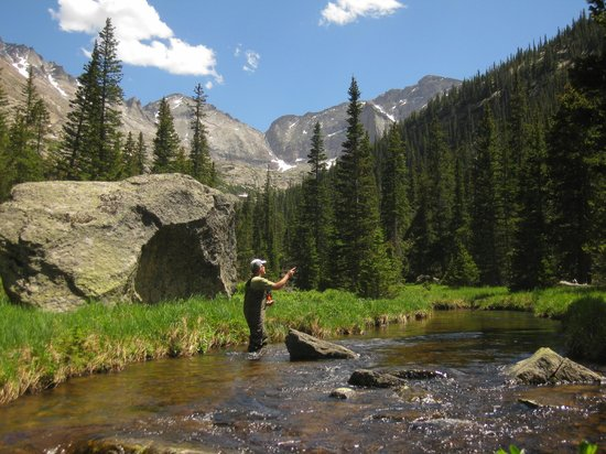 Fly fishing in rocky mountain national park picture of for Colorado fishing trips