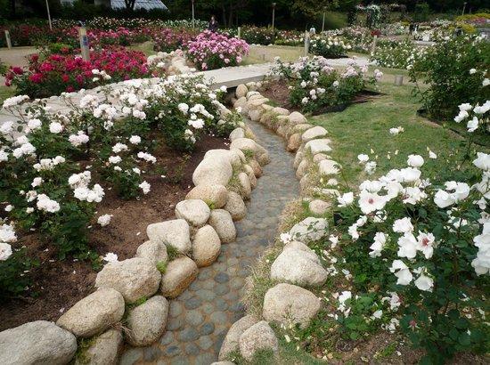 Utsubo Park: 小川が流れるバラの小道