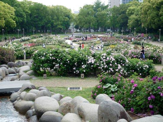 Utsubo Park: 立体的な作りの公園